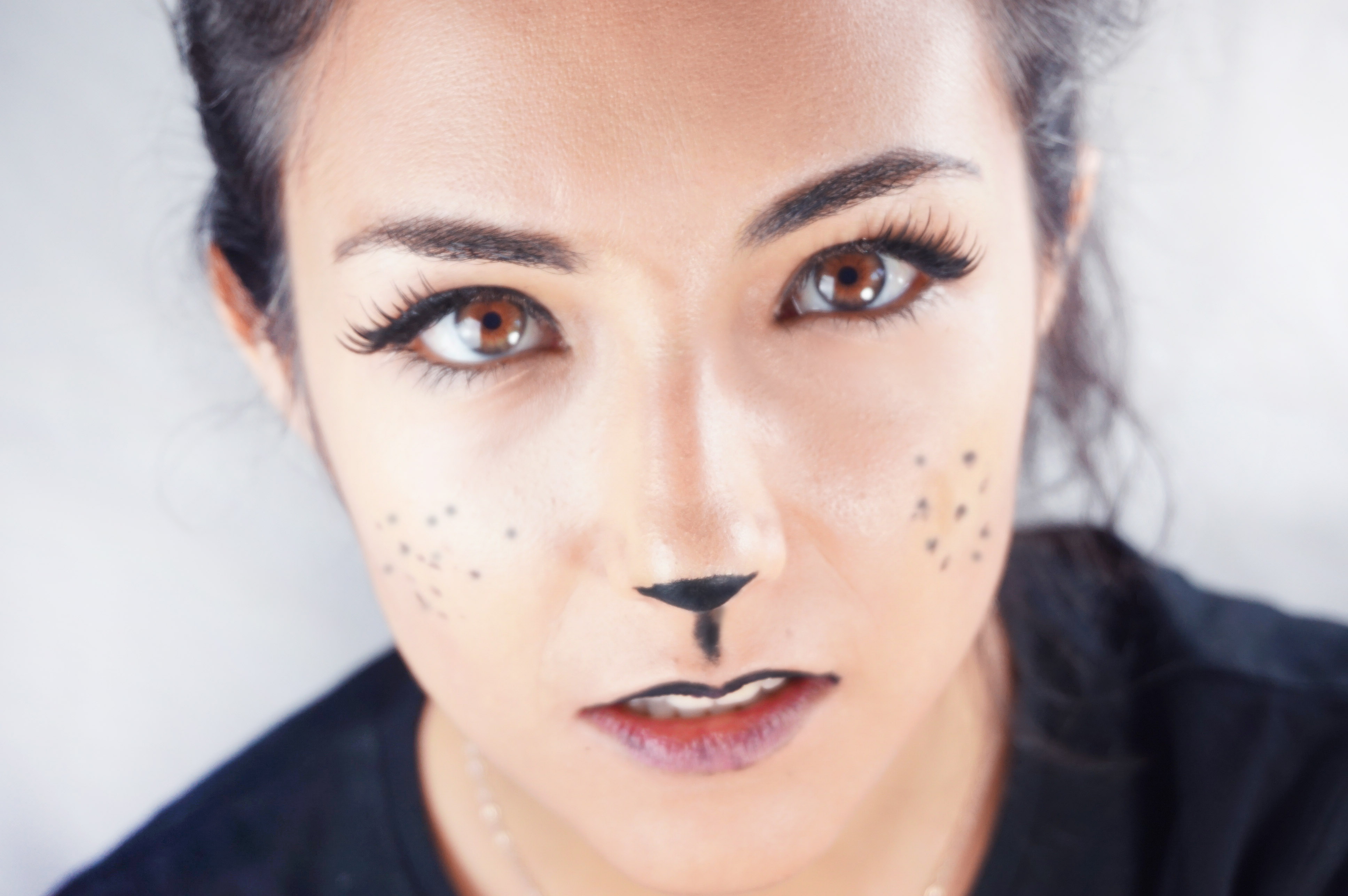 Halloween easy catwoman makeup beter shop accesorios y cosmticos surprise everyone on halloween night with a sexy look that you can do yourself in no time at all solutioingenieria Image collections